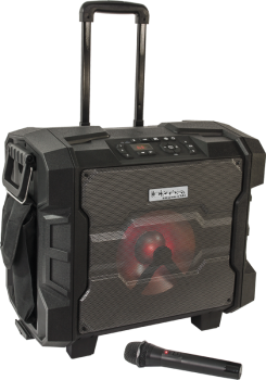 IBIZA Beschallungsanlage - Trolley WPORT10-300 Outdoor Akku USB,Bluetooth,FM